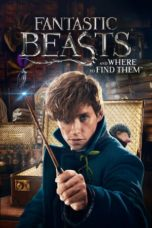 Download Fantastic Beasts and Where to Find Them (2016) Sub Indonesia